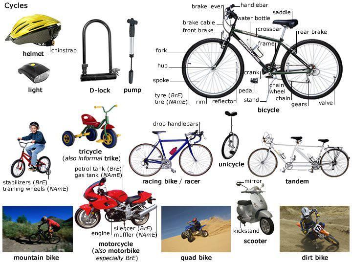 Bike Parts Nicole Tavares English Teacher